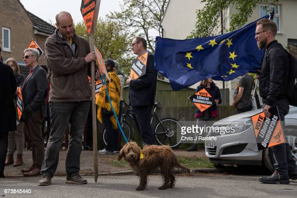 Cockapoo dog 'Bonnie' is seen next to a European Union flag and Liberal Democrats supporters as party leader Tim Farron campaigns for the British...