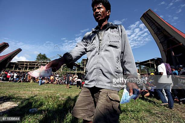 In the rural mountain area of Tana Toraja in South Sulawesi Indonesia cockfights appear to be a very popular diversion among locals Apart from the...