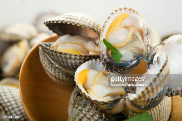 cockles pictures cockle stock photos and pictures getty images 3650