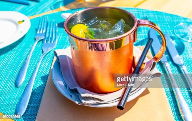 cocktail moscow mule - mula imagens e fotografias de stock