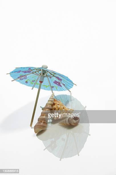 Cocktail umbrella and shells