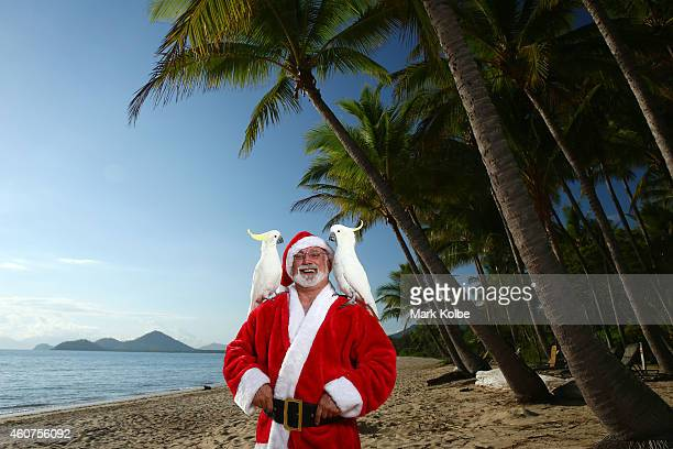 A cocky Queensland Christmas Santa swaps two turtle doves and a partridge in a pear tree for two cockatoos under Queenslands palm trees at Palm Cove...