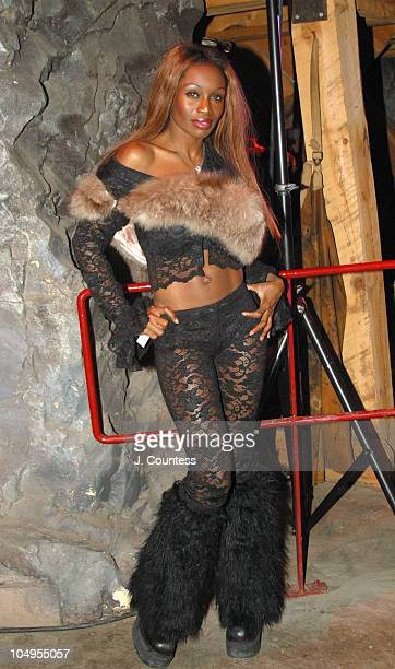 Coco Johnsen during 2003 Sundance Film Festival Closing Ceremonies AfterParty at The Silver Mine in Park City Utah United States