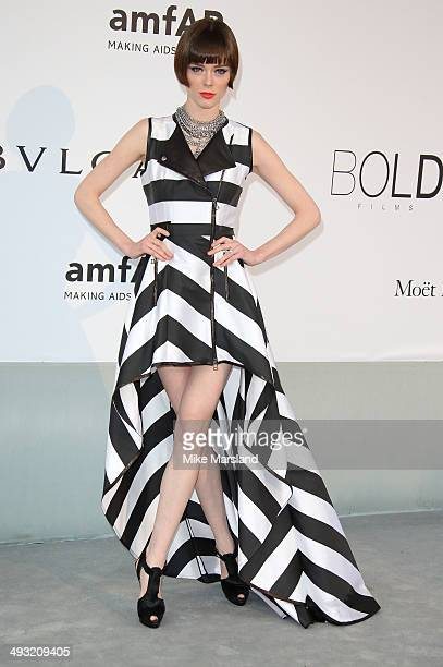 Coco Rocha attends amfAR's 21st Cinema Against AIDS Gala Presented By WORLDVIEW BOLD FILMS And BVLGARI at the 67th Annual Cannes Film Festival on May...