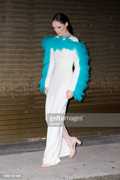 Coco Rocha is seen in Tribeca on November 12 2018 in New York City