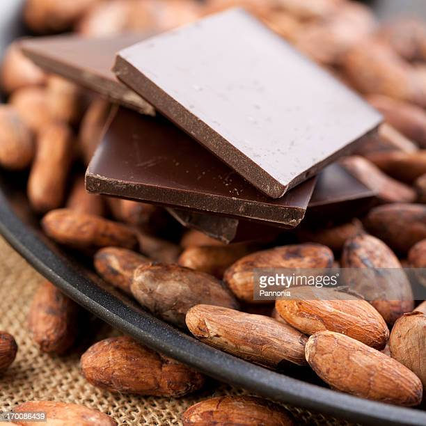 Cocoa Bean in Pan with Chocolate