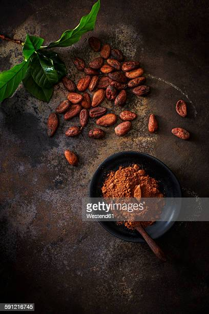 Cocoa beans and bowl of cocoa on rusty ground