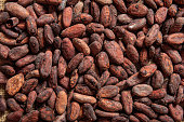 Cocoa beans as background