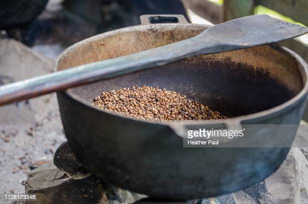 Cocoa beans being cooked and dried at family farm in Dominican Republic