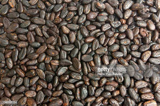 Cocoa beans from Madagascar