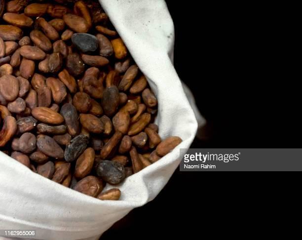 cocoa beans in a hessian bag against a dark background - café colheita imagens e fotografias de stock