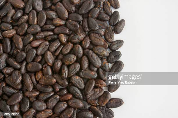 cocoa beans - pierre yves babelon stock pictures, royalty-free photos & images