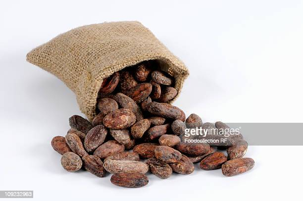 Cocoa beans spilling from sack