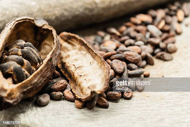 Cocoa beans with fruit