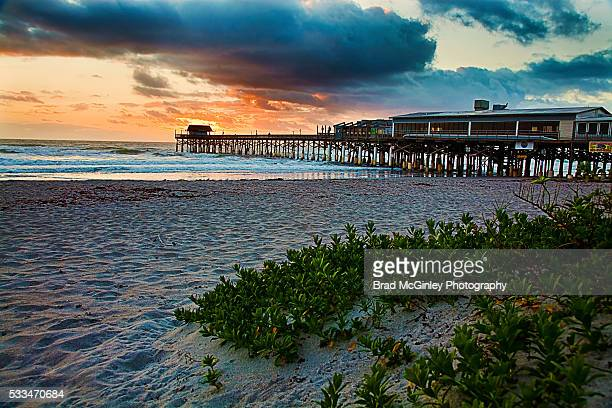 cocoa color - cocoa beach stock pictures, royalty-free photos & images
