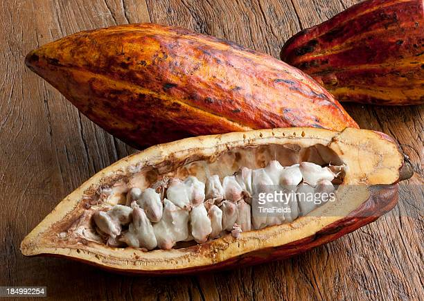 cocoa fruit - foodstuff - theobroma stock photos and pictures