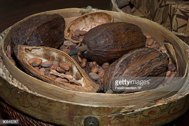 Cocoa fruits and cocoa beans, close up