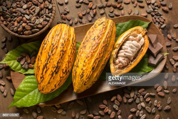 Cocoa fruits and nibs composition
