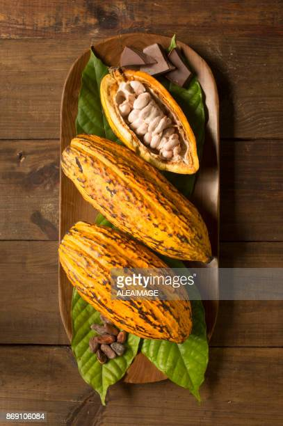 Cocoa fruits composition