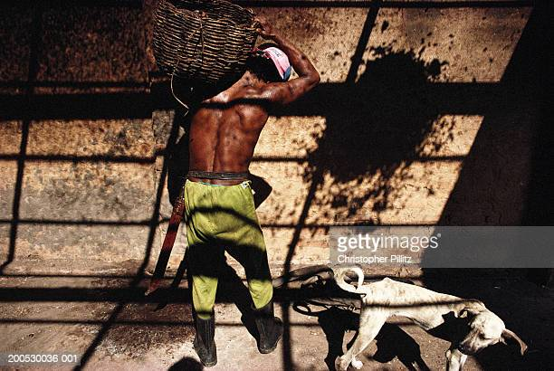 A cocoa planation worker collects dried beans from within the wood fired oven, Bahia, Brazil