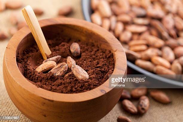 Cocoa Powder and Bean in Bowl