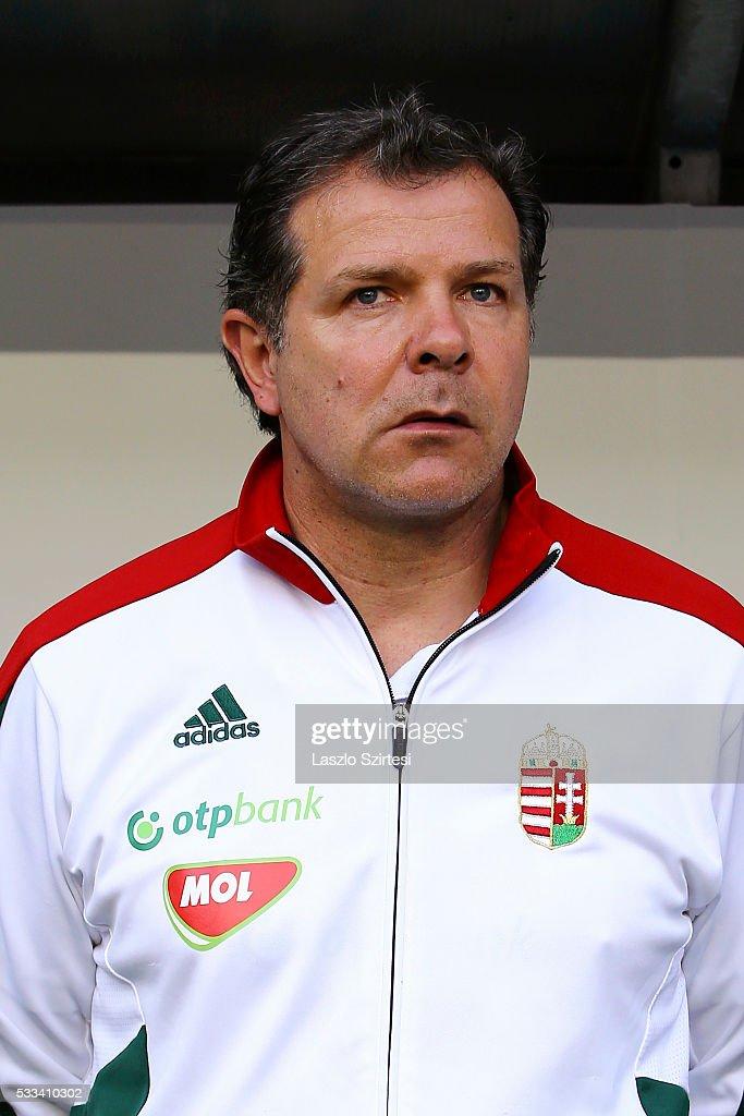 Hungary v Ivory Coast -  International Friendly : News Photo
