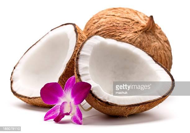 Kokosnuss und orchid