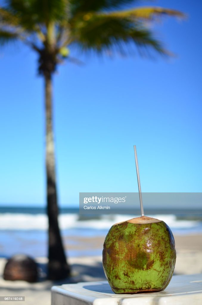 Coconut at the beach in Bahia : Stock Photo