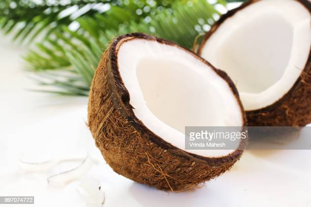 coconut cut in half isolated on white - bisected stock pictures, royalty-free photos & images