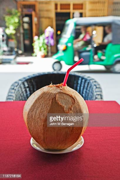 coconut drink, phnom penh - coconut water stock pictures, royalty-free photos & images