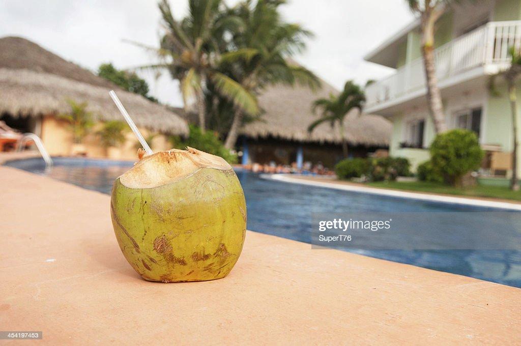 Coconut bebida junto a la piscina : Foto de stock