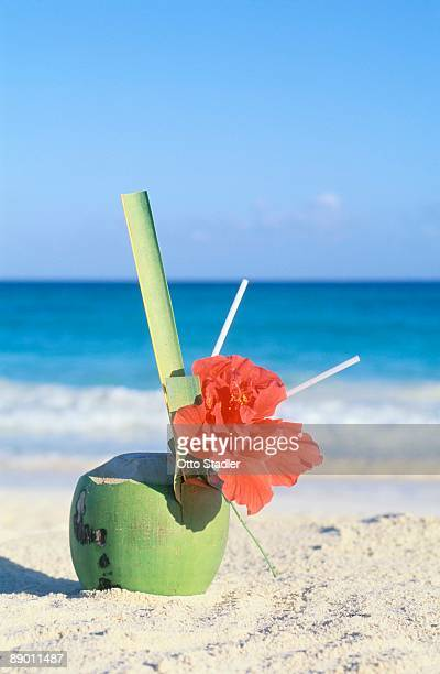 Coconut drink with flower on beach