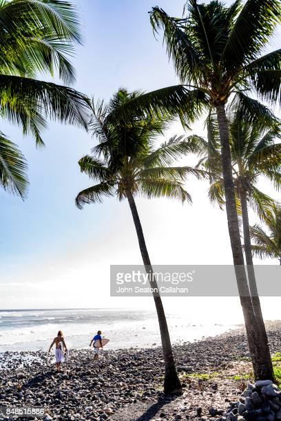 Coconut Grove on Anjouan Island