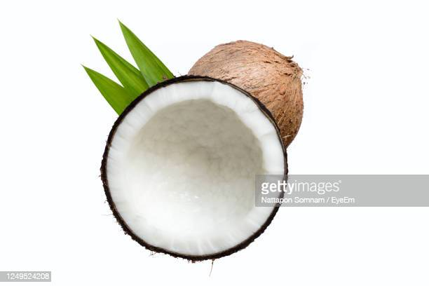 coconut is separated from the hard white background for making coconut milk - coconut palm tree stock pictures, royalty-free photos & images
