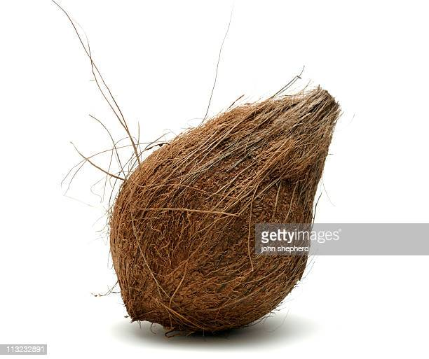 coconut isolated against a white background