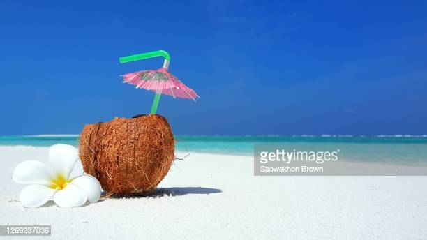 coconut juice with straw in seashore, summer concept - coconut water stock pictures, royalty-free photos & images