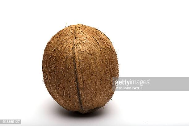 coconut - jean marc payet stock pictures, royalty-free photos & images
