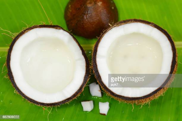 coconut - coconut water stock pictures, royalty-free photos & images