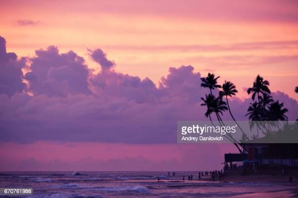 Kokospalmen und indischen Ozean im Sonnenuntergang
