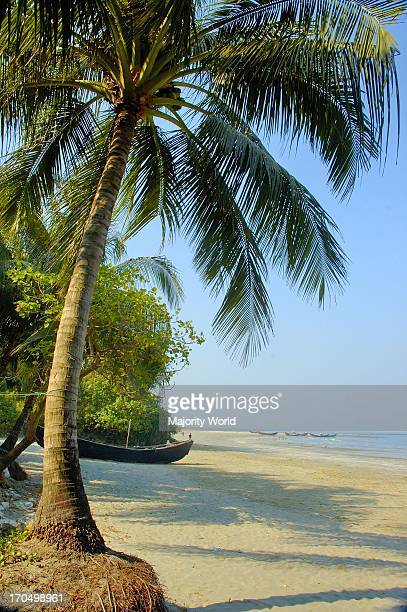 Coconut trees at Saint Martins Island at Teknaf in Coxs Bazar It is the only coral island of Bangladesh and one of the famous tourist destinations of...