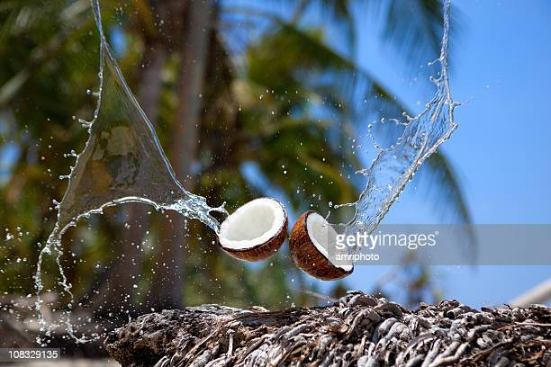 coconut water splashing - coconut water stock pictures, royalty-free photos & images