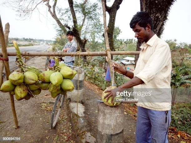 Coconut water vendor