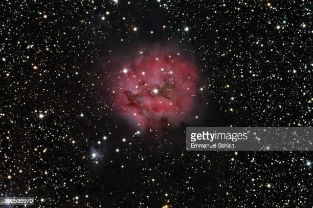 ngc 4490 - cocoon nebula - september 2008 - supernova foto e immagini stock