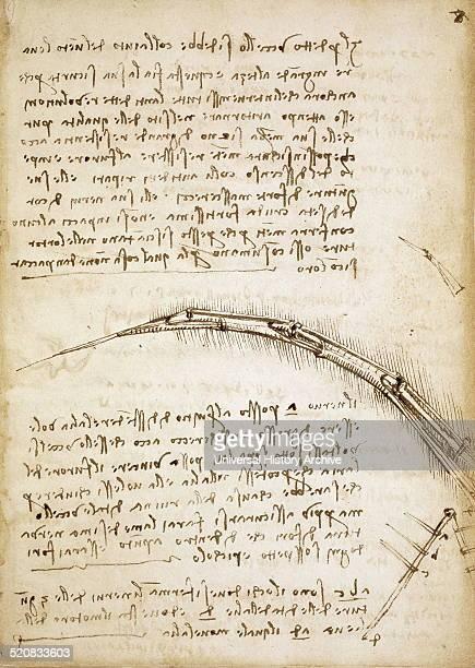 Codex on the Flight of Birds circa 1505 By Leonardo da Vinci