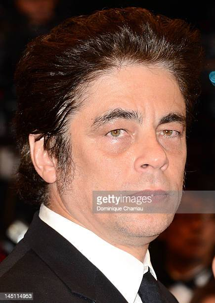 CoDirector Benicio Del Toro attends the Holy Motors Premiere during the 65th Annual Cannes Film Festival at Palais des Festivals on May 23 2012 in...