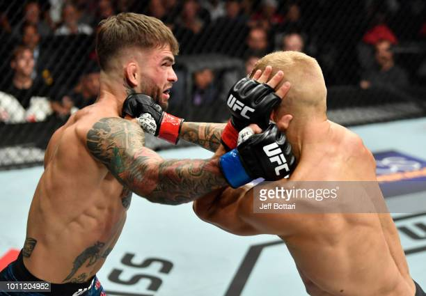 Cody Garbrandt and TJ Dillashaw trade punches in their UFC bantamweight championship fight during the UFC 227 event inside Staples Center on August 4...