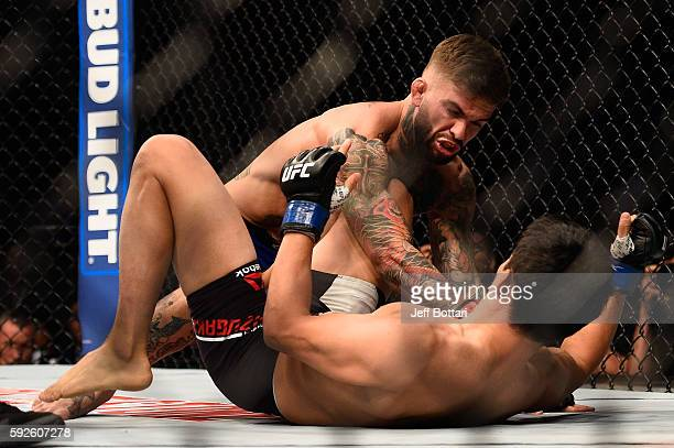 Cody Garbrandt fights Takeya Mizugaki of Japan in their bantamweight bout during the UFC 202 event at TMobile Arena on August 20 2016 in Las Vegas...