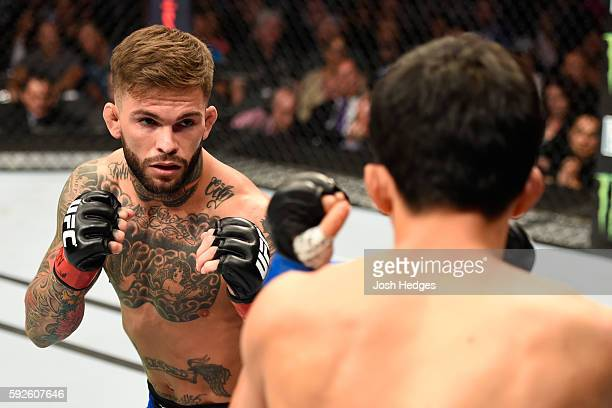 Cody Garbrandt fights Takeya Mizugaki of Japan in their bantamweight bout during the UFC 202 event at T-Mobile Arena on August 20, 2016 in Las Vegas,...