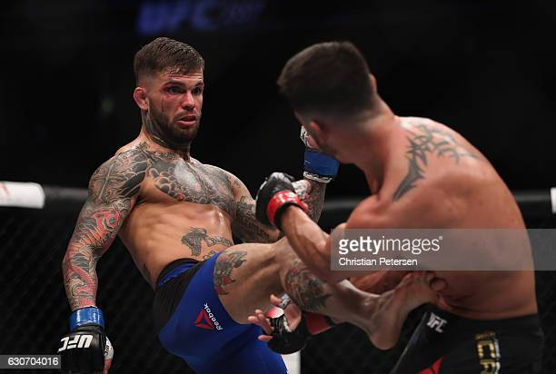 Cody Garbrandt kicks Dominick Cruz in their UFC bantamweight championship bout during the UFC 207 event on December 30 2016 in Las Vegas Nevada