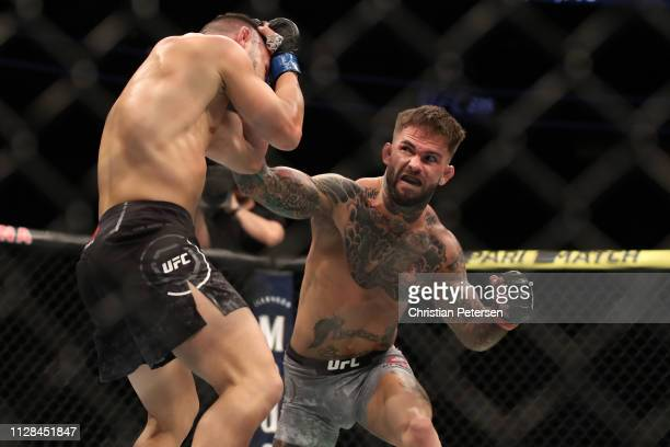 Cody Garbrandt punches Pedro Munhoz of Brazil in their bantamweight bout during the UFC 235 event at TMobile Arena on March 2 2019 in Las Vegas Nevada